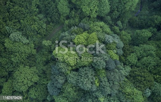 923623146 istock photo Aerial top view of spring in forest in rural 1162570424