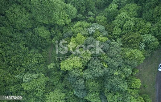 923623146 istock photo Aerial top view of spring in forest in rural 1162570429
