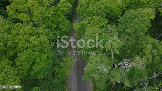 923623146 istock photo Aerial top view of summer green trees and road in forest in rural canada 1011567328
