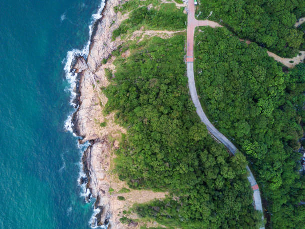 Aerial Top View of the road through Green forest on the mountain on Tropical Island with ocean side. The scenic aerial landscape of nature on a green hill with a road through the wood. stock photo