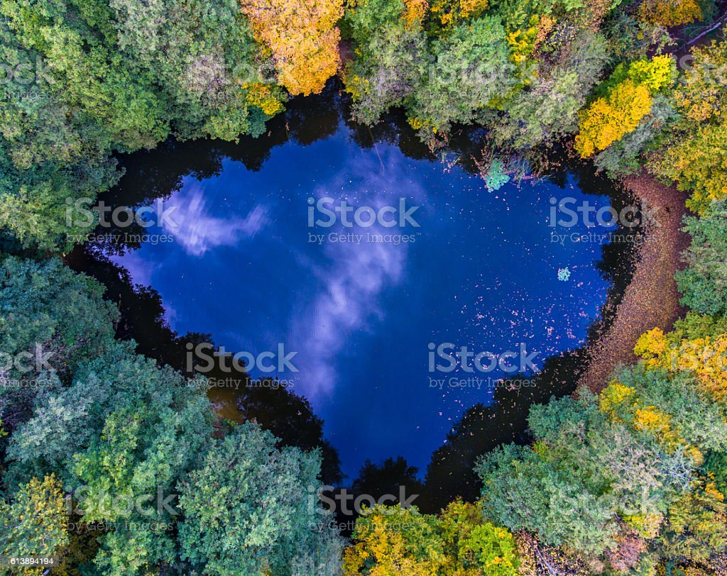 Aerial top view of wild forest lake stock photo