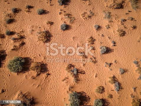 Aerial, Top-Down View of a Sandy Desert, Surrounded by Dry Brush and Footprints - on a Bright, Hot Sunny Day