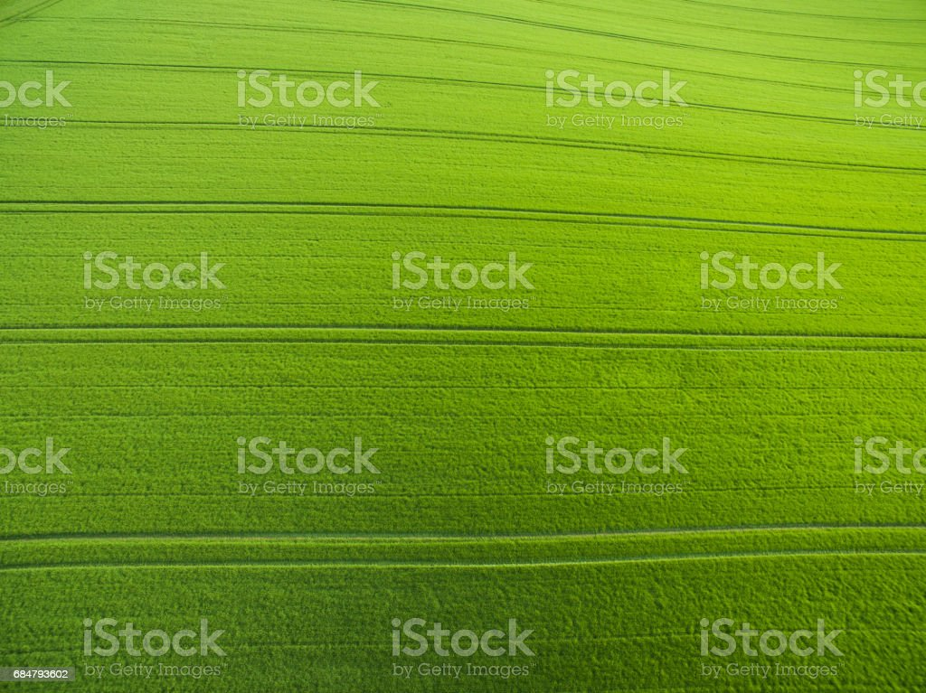 Aerial view above green fields stock photo