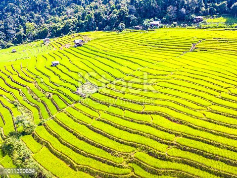 istock Aerial view amazing landscape rice terraces in a beautiful day  Chiang Mai Thailand 1011320634