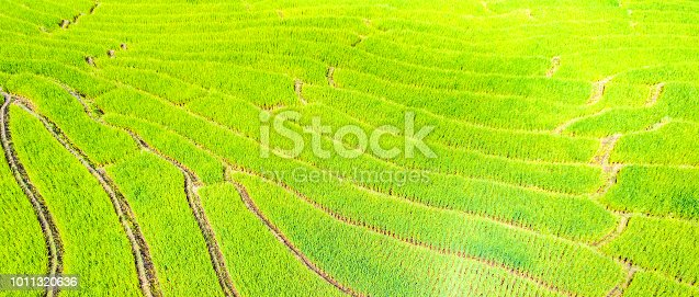 istock Aerial view amazing landscape rice terraces in a beautiful day  Chiang Mai Thailand 1011320636