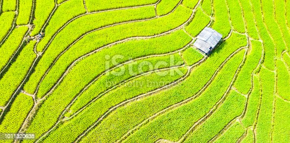 istock Aerial view amazing landscape rice terraces in a beautiful day  Chiang Mai Thailand 1011320638