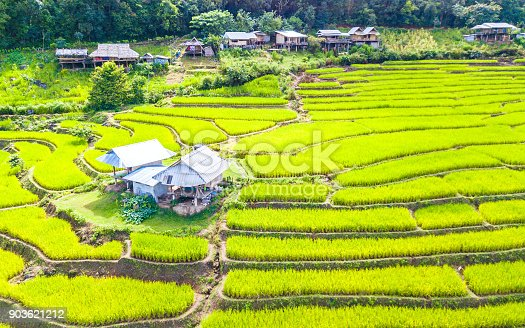 istock Aerial view amazing landscape rice terraces in a beautiful day Chiang Mai Thailand 903621212