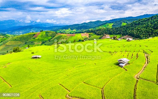 istock Aerial view amazing landscape rice terraces in a beautiful day Chiang Mai Thailand 903621226