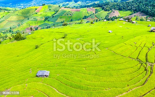 istock Aerial view amazing landscape rice terraces in a beautiful day Chiang Mai Thailand 903621228