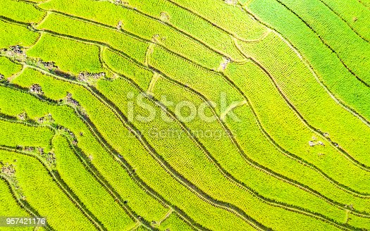 istock Aerial view amazing landscape rice terraces in Chiang Mai Thailand 957421176