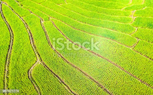 istock Aerial view amazing landscape rice terraces in Chiang Mai Thailand 957421274