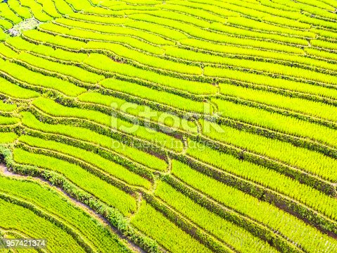 istock Aerial view amazing landscape rice terraces in Chiang Mai Thailand 957421374