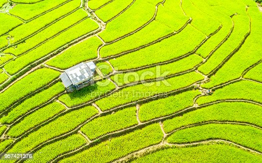 istock Aerial view amazing landscape rice terraces in Chiang Mai Thailand 957421376