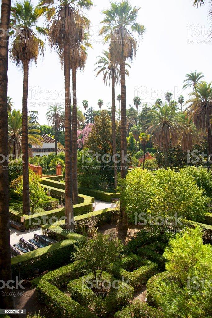 Vista aérea en los jardines del Alcázar con laberinto verde - foto de stock