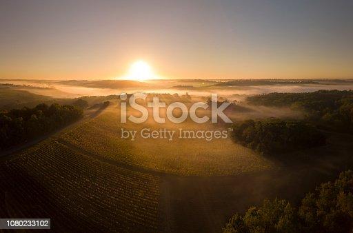 Aerial view, Bordeaux vineyard, landscape vineyard and fog at sunrise south west of france