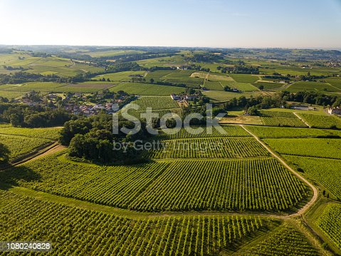 Aerial view, Bordeaux vineyard, landscape vineyard south west of france, europe