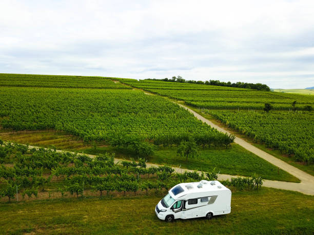 Aerial view, camper in the vineyards, Alsace France stock photo