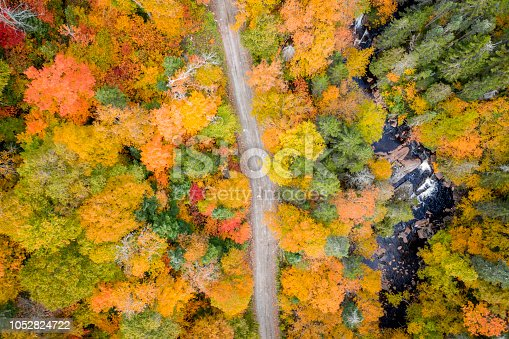 Aerial View Empty road leading trough beautiful colorful autumn forest in sunny fall