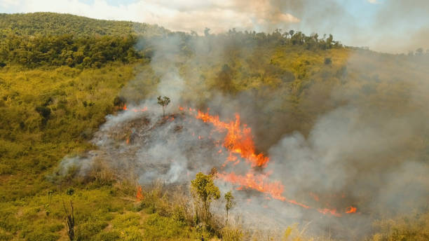 Aerial view Forest fire. Busuanga, Palawan, Philippines Aerial view forest fire on the slopes of hills and mountains. Forest and tropical jungle deforestation for human food farming and export. large flames from forest fire. Using fire to destroy natural habitat and causing large scale environmental damage in Asia. Coron, Philippines,Palawan, Busuanga. fire natural phenomenon stock pictures, royalty-free photos & images