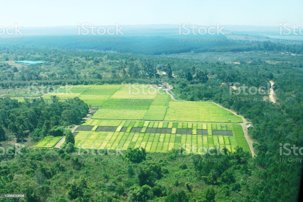 Vue aérienne de plantations de thé dans les hautes-terres méridionales de Mufindi en Tanzanie - Photo