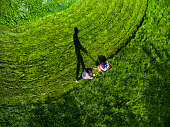 Man pushing grass trimming lawnmower, aerial view.
