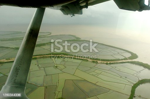 858837068 istock photo Aerial view looking down from a flooded rice field 1250344336