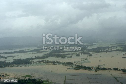 858837068 istock photo Aerial view looking down from a flooded rice field 1250345122