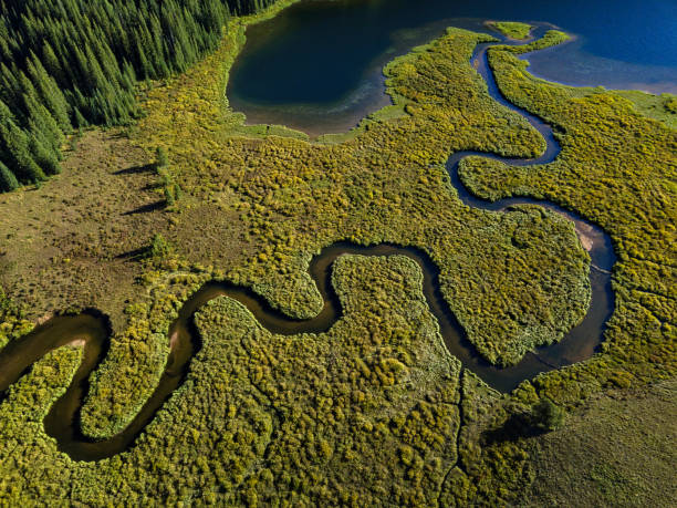 Aerial View Meander Creek Mountain Lake stock photo