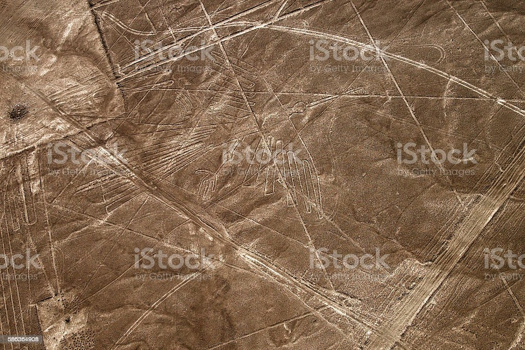 Aerial view Nazca Lines of the Condor, Peru. stock photo