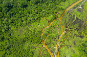 Aerial view of a Bai (saline, mineral lick) in the rainforest of the Congo Basin. This rich mineral clearing is located in the middle of the rainforest where forest elephants, buffalos and gorillas gather in large numbers to reap the benefits of the mineral salts. Odzala National Park, Republic of Congo.