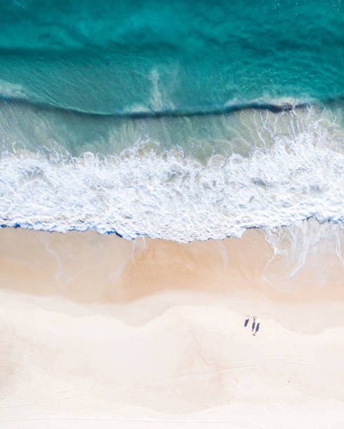 flygfoto över en strand och vatten. - golf sommar skugga bildbanksfoton och bilder