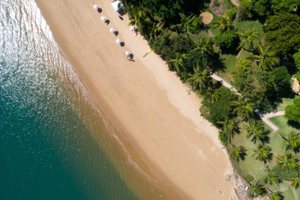 Aerial View of a Beach in Ilhabela, Brazil stock photo