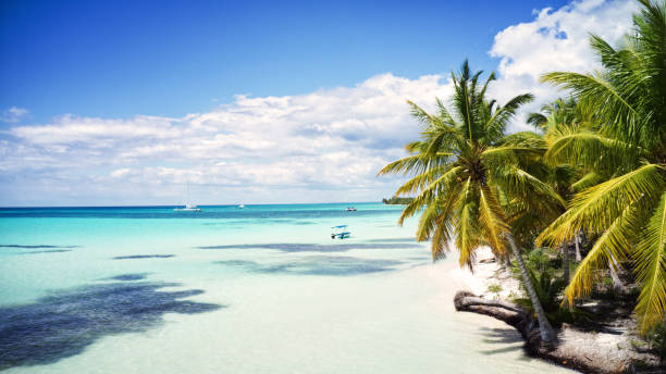 aerial view of a beautiful caribbean island, Saona, Dominican Republic stock photo