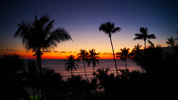 aerial view of a beautiful tropical sunset at the sea, Caribbean Sea stock photo