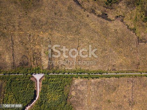 Aerial view of a bog road near a woodland, Kilteevan, Roscommon, Ireland.