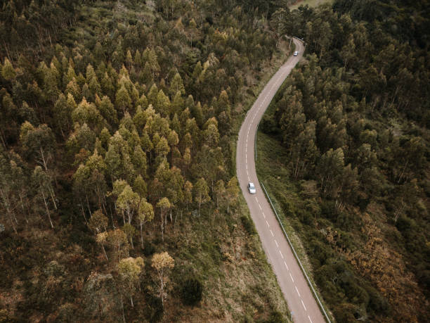 Aerial view of a car on a road crossing a forest stock photo