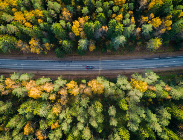 Aerial view of a car on the road. Autumn landscape countryside. Aerial view of a car on the road. Autumn landscape countryside. Aerial photography of autumn forest with a car on the road. Captured from above with a drone. Aerial photo. Quadcopter. Aerial car view. Motion blur effect high section stock pictures, royalty-free photos & images