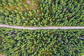 Aerial view of a country road, in a forest, photographed near Cluj, Romania