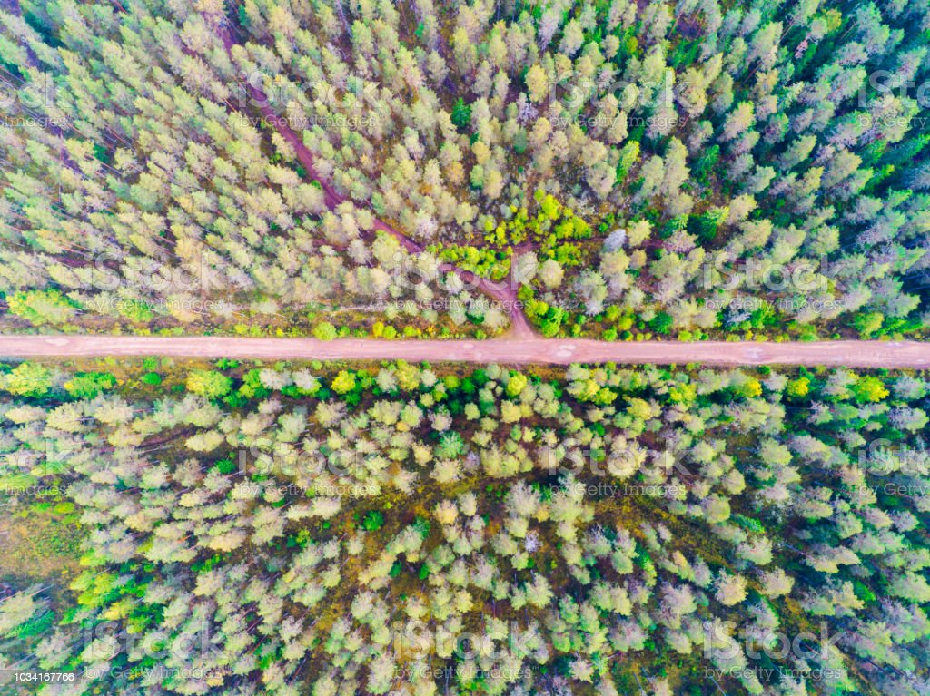 Aerial view of a country road in the forest. Beautiful landscape....