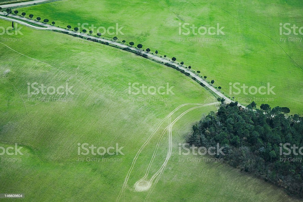 aerial view of a grass field with tree-lined street royalty-free stock photo
