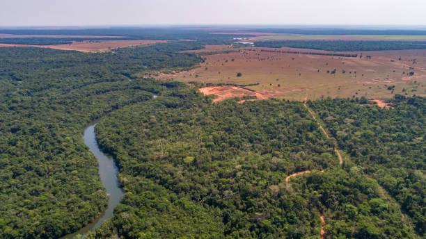 Luftaufnahme eines mäandernden Amazonas-Zuflusses, Straßen durch Regenwald und angrenzende landwirtschaftliche Flächen, Amazonas-Regenwald, San Jose do Rio Claro, Mato Grosso – Foto