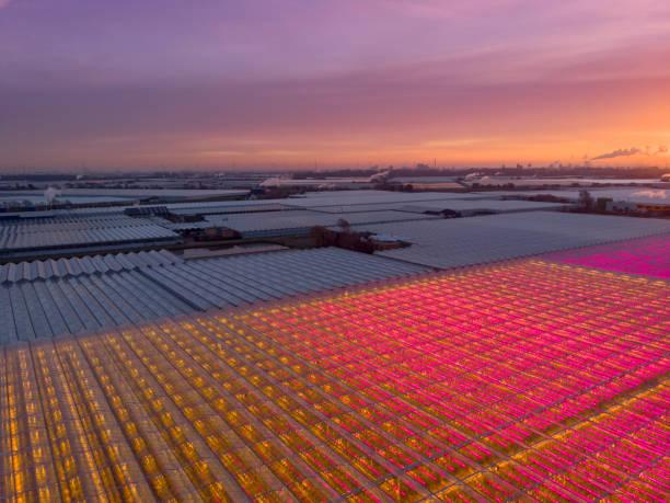 luchtfoto van een moderne landbouw broeikasgassen in nederland - glass house stockfoto's en -beelden