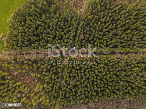 istock Aerial view of a pine forest in winter, Moate Park, Roscommon, Ireland. 1129645370