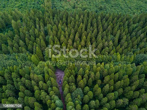 831591456 istock photo Aerial view of a pine forest, Roscommon, Ireland. 1083667104
