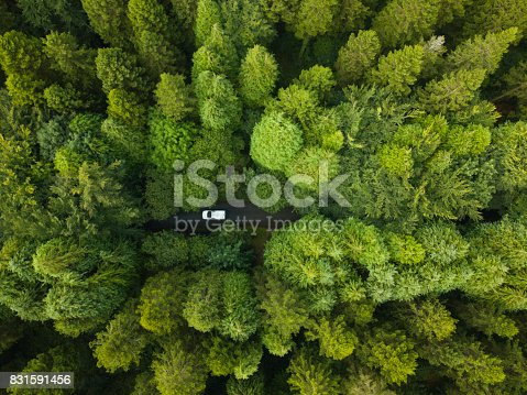 istock Aerial view of a pine forest with a white van driving through a pathway, Roscommon, Ireland 831591456
