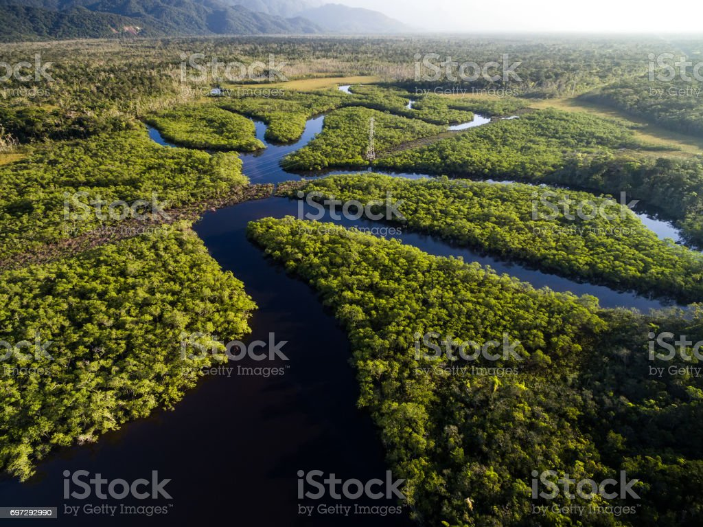 Aerial View of a Rainforest in Brazil stock photo