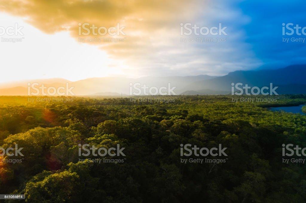 Vista aérea de uma floresta tropical no Brasil - foto de acervo