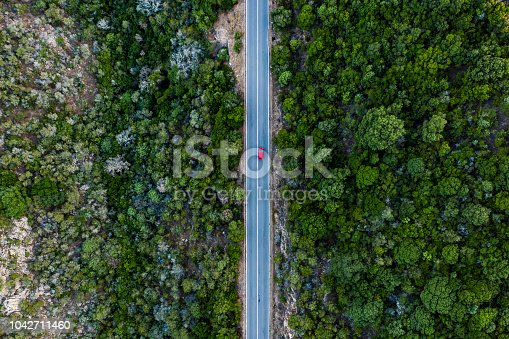 istock Aerial view of a red car that runs along a road flanked by a green forest. 1042711460