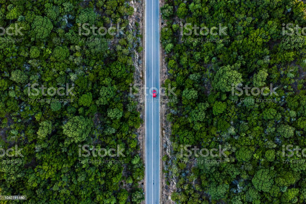 Aerial view of a red car that runs along a road flanked by a green forest. royalty-free stock photo