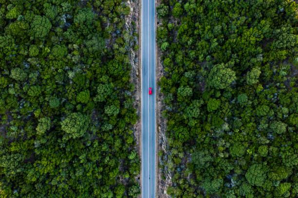 vista aérea de un coche rojo que corre a lo largo de un camino flanqueado por un bosque verde. - vía fotografías e imágenes de stock